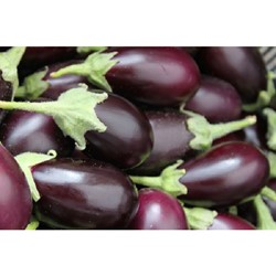 Picture of Brinjal Purple Round - 250 gm