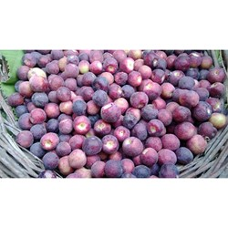 Picture of Falsa - 1 Kg